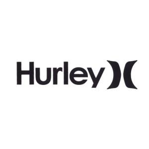 Hurley logo image