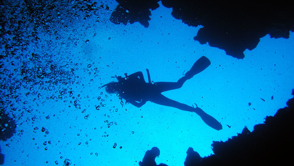 diver-diving-in-a-wetsuit